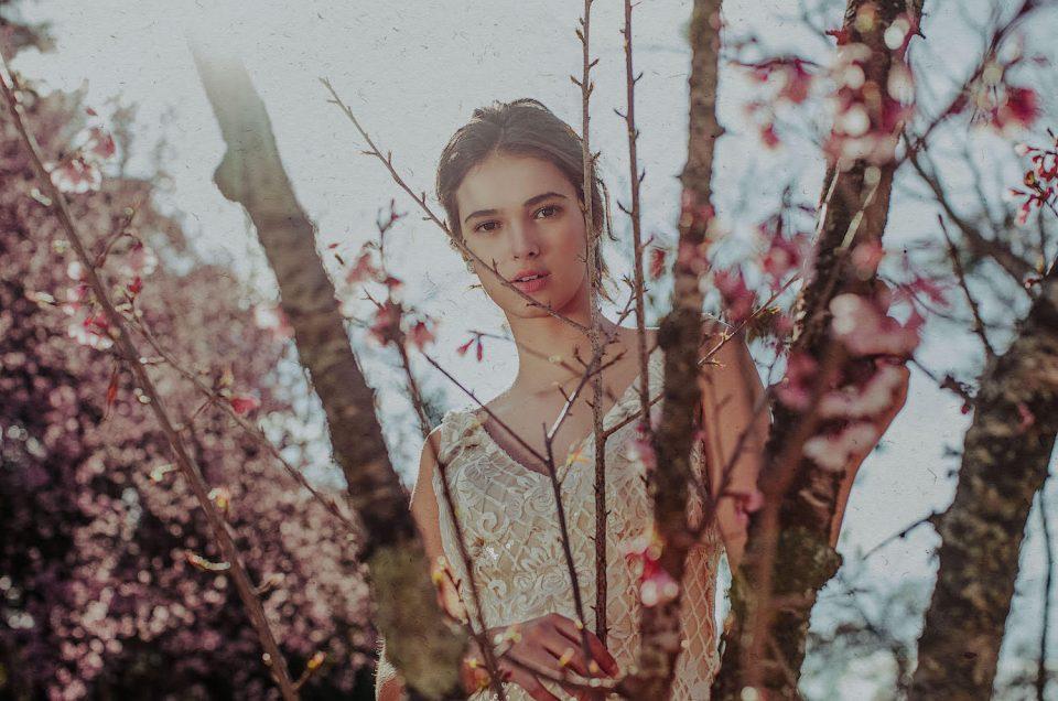 Noivas & cerejeiras ♡♡